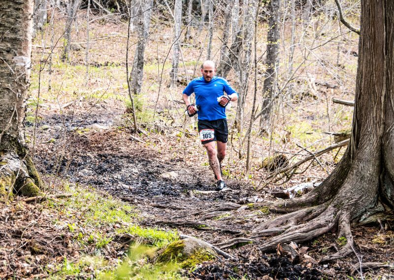 Ancient Cedar Forest - Photo Credit Fresh Tracks Media