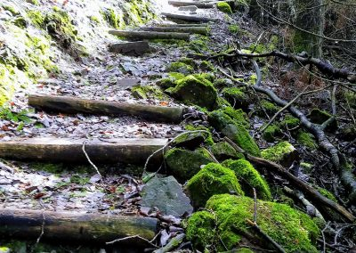 Moose Mountain Staircase - Photo Credit John Storkamp