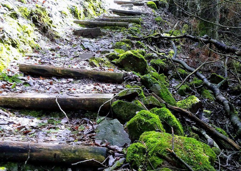 Moose Mountain Staircase - Photo Credit John Storkamp