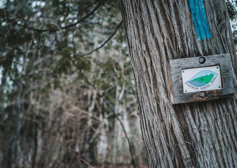 SHT Cedar - Photo Credit Fresh Tracks Media